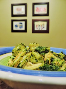 Kale Pesto Shrimp