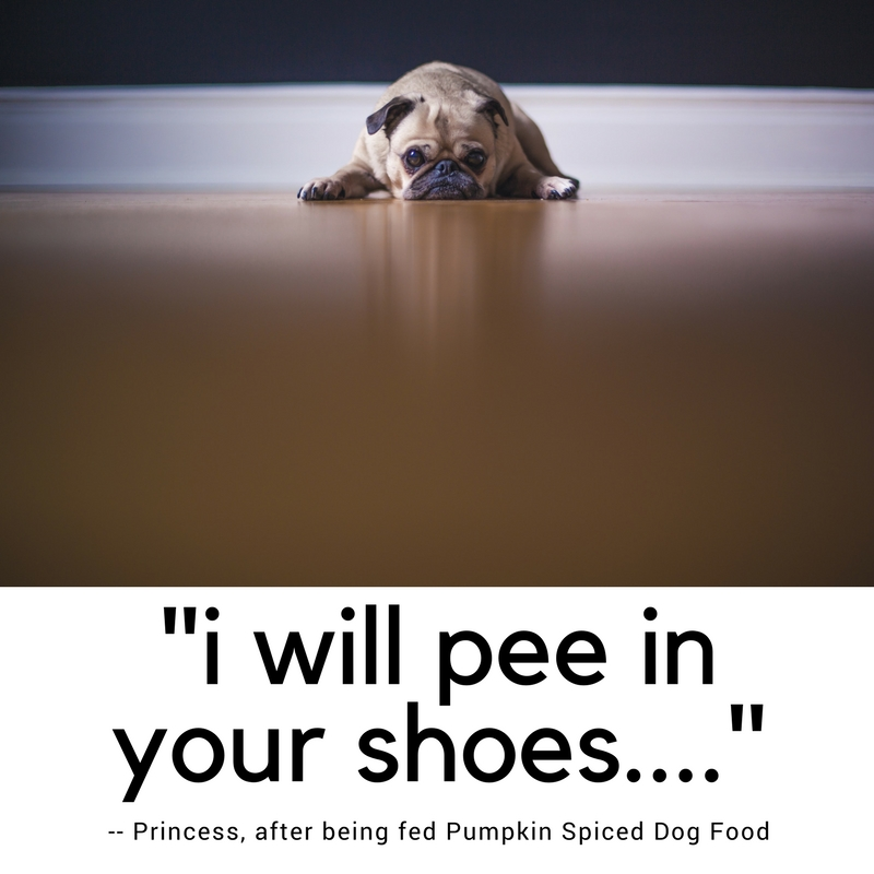 i will pee in your shoes